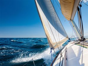 White sailing